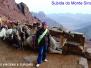 Monte Sinai - 2014