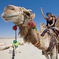 egito__0002_Egypt-CamelRide_shutterstock_17483650